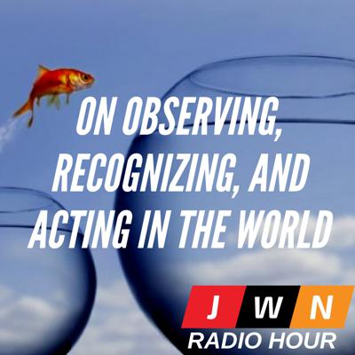 Cover art for On Observing, Recognizing, And Acting In The World