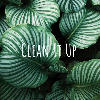 The Clean It Up Podcast features two millennial BFFs on a mission to discover and share better beauty and lifestyle habits. Jess and Julie have been researching and experimenting with clean beauty and skincare lines, nontoxic cleaning and lifestyle products, and sustainability hacks across the board. Each episode will focus on a specific topic and the girls will share their favorite discoveries - and their funniest fails - with you! Subscribe now so you never miss an episode!