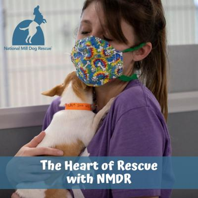 The Heart of Rescue with NMDR
