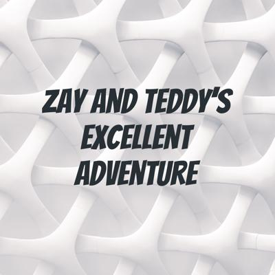 Zay and Teddy's Excellent Adventure