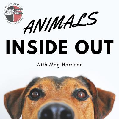 Animals Inside Out