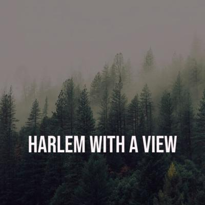 Harlem With A View