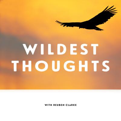 Wildest Thoughts