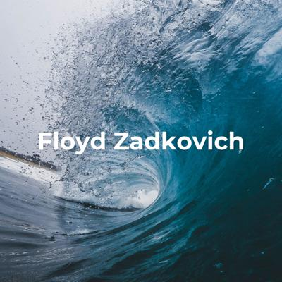 Floyd Zadkovich - How to Deal with an Economic Crisis