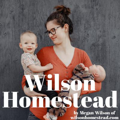 Simple life in the farmhouse. And all the things I'm passionate about! Motherhood, homesteading, food from scratch, a handmade home! Support this podcast: https://anchor.fm/wilsonhomestead/support