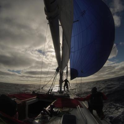 Offshore Sailing Today with COSS