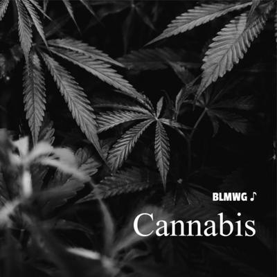 BLMWG - A Conversation about Cannabis and Black Equity