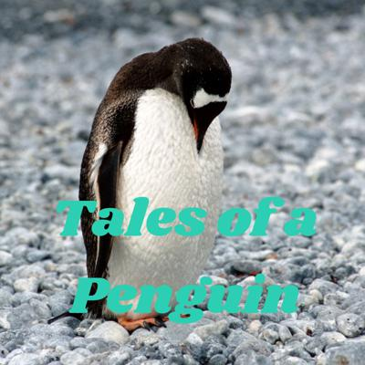 Coldest the penguin has agreed to tell you tales of wonder and magic in exchange for friendship.