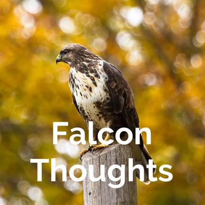 Falcon Thoughts