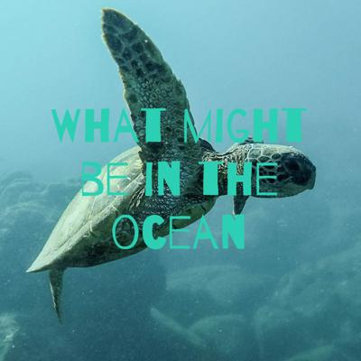 What might be in the ocean