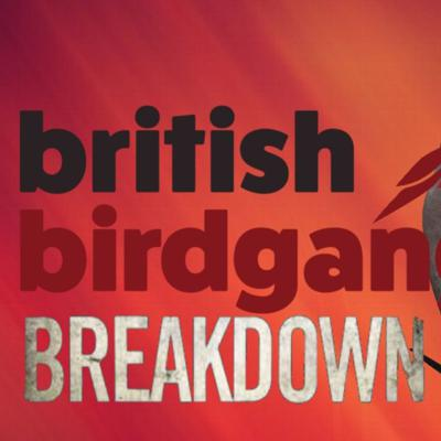 Home of the BritishBirdgang Breakdown. THE Podcast for Arizona Cardinals fans based in the UK and Ireland and anyone else who is happy enough to hear a trio of fans witter on about the latest goings on with the Arizona Cardinals franchise.  Want to get in touch with us? Find us on Twitter @BritishBirdgang or send over an email to tom@britishbirdgang.co.uk and we'd be more than happy to answer any queries that you may have.