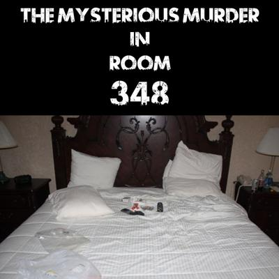 Cover art for The Mysterious Murder In Room 348