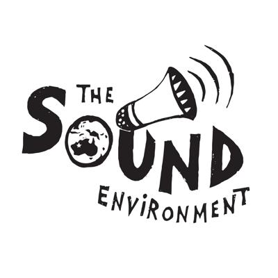 The Sound Environment