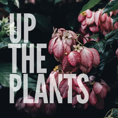 Up The Plants: A Botanical Takeover