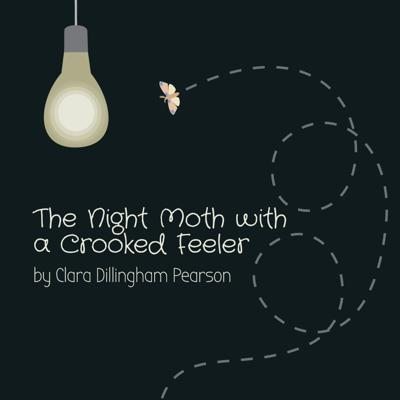 Cover art for The Night Moth With a Crooked Feeler by Clara Dillingham Pearson