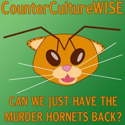 Cover art for 2020-08-02 Can we have the murder hornets back?