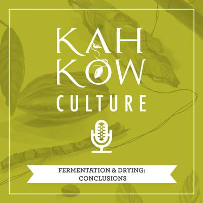 Cover art for Episode 4, Pt. 3: Fermentation & Drying, conclusions.