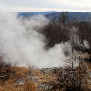 Heat-Loving Microbes, Once Dormant, Thrive Over Decades-Old Fire