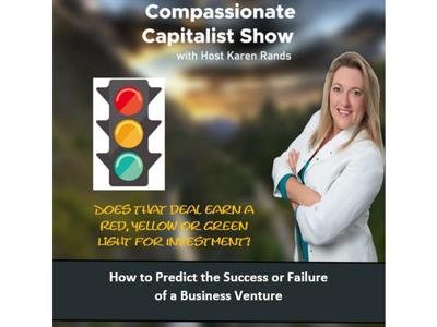 Cover art for How to Predict the Success or Failure of a Startup Business