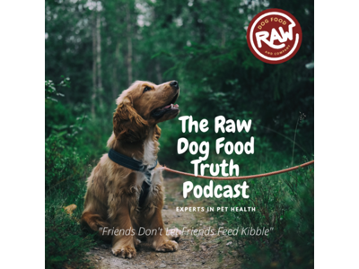 Cover art for Can Your Pet Get Worms From Eating a Raw Diet? - Dr. Judy Jasek Explains