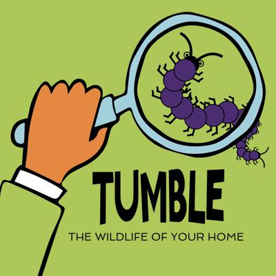 Cover art for The Wildlife of Your Home Podcourse: The First Suspect