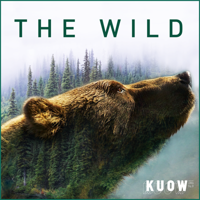 Cover art for Stories from the Wild, Part 2