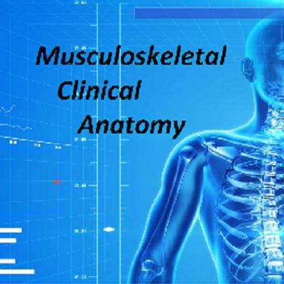 Musculoskeletal clinical anatomy