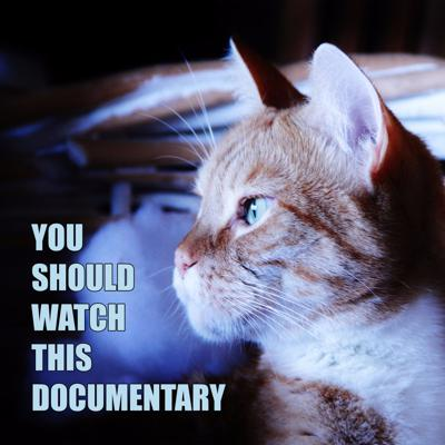 You Should Watch This Documentary