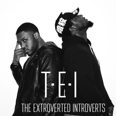 The T.E.I . Podcast (The Extroverted Introverts)