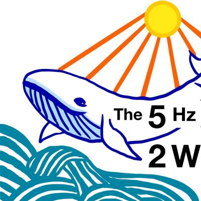 The 52Hz Whale