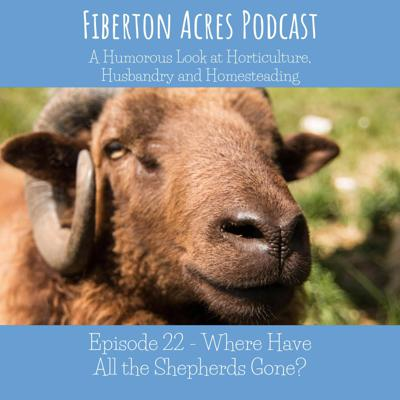 Cover art for Where Have all the Shepherds gone?