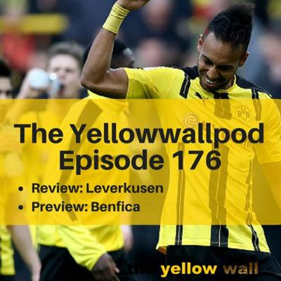 Yellowwallpod