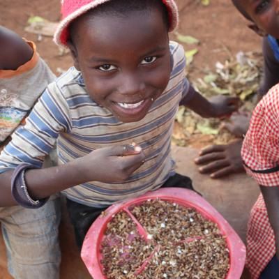 Cover art for Lentils, Spice, Chicken, Rice: The Global Effort that is Saving Children's Lives in Africa