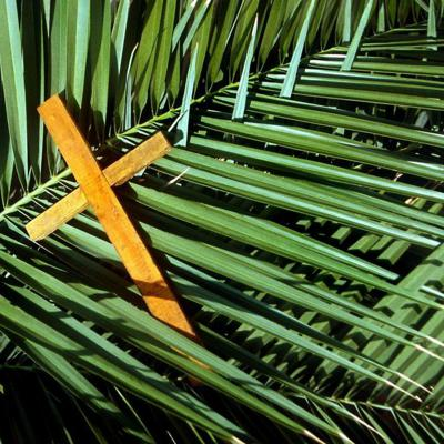 Cover art for WORSHIP: Palm Sunday, April 5, 2020