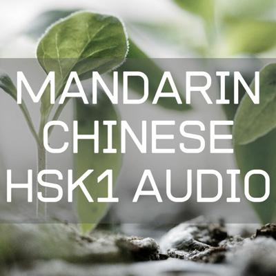 Cover art for Mandarin Chinese HSK1 Lesson 11.2 : Behind his house there are many restaurants