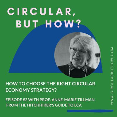 Cover art for Episode 02: How to choose a circular economy strategy with Prof. Anne-Marie Tillman