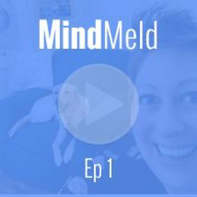 Cover art for MindMeld Ep1 - Being an Online Teacher while Working from Home