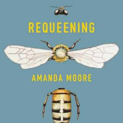 Cover art for Requeening by Amanda Moore