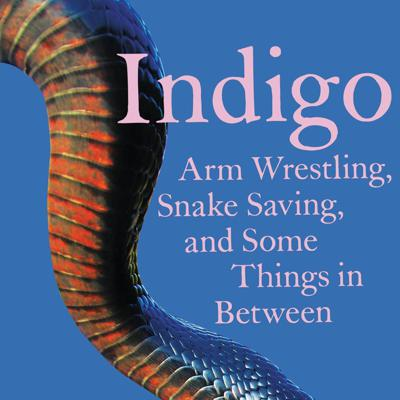 Cover art for Indigo: Arm Wrestling, Snake Saving, and Some Things in Between by Padgett Powell