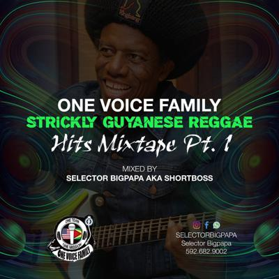 Cover art for One Voice Best Of Guyanese Reggae Hits My By Sel Bigpapa