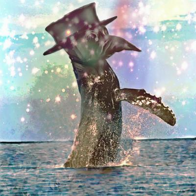 Cover art for Isolated Whales