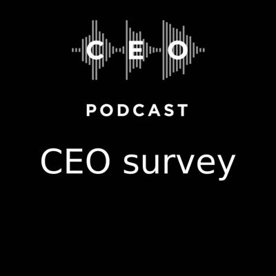 Cover art for CEO Podcast #10 - CEO Survey