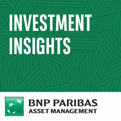 Investment Insights