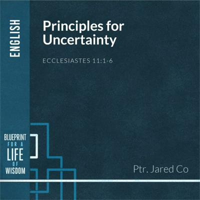 Cover art for Principles for Uncertainty
