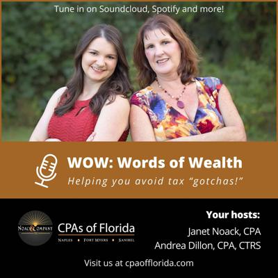 WOW - Words of Wealth by CPAs of Florida - Noack & Company