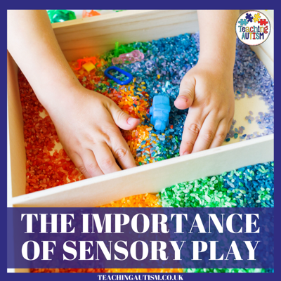 Cover art for Why Sensory Play is Important