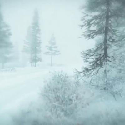 Cover art for Winter Storm Ambience - Heavy Snowstorm  Blizzard Howling Wind Sounds