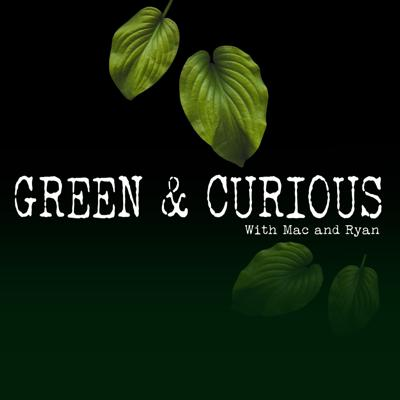 Green and Curious