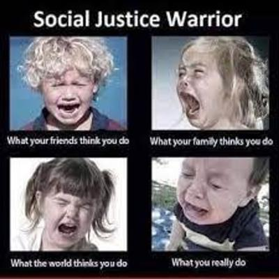Cover art for The Social Justice