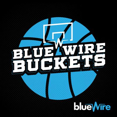Blue Wire Buckets